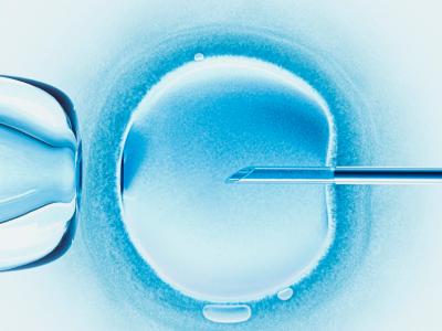 Kim jest embriolog?